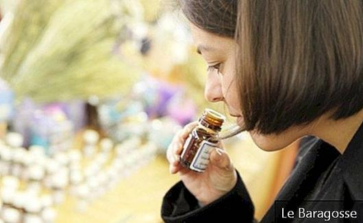 Tea tree oil: an ally of health, beauty and even house cleaning