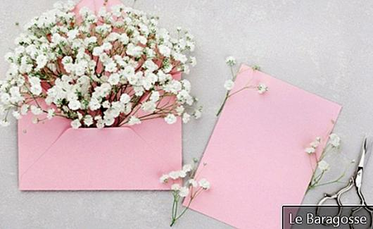 Mother's Day Card: A Loving Way to Express Your Love
