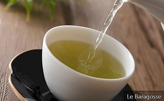 10 Tea Recipes to End Urinary Infection