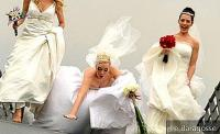 Check 7 Funny Wedding Videos