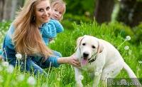 Prevention: How to Avoid Dog Bites in Children