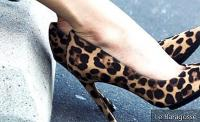 Leopard shoe: How to wear the shoe that transforms your look