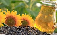 20 Benefits Of Sunflower Oil For Your Skin, Hair And Health