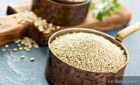 Quinoa: 7 Good Reasons To Eat And Delicious Recipes To Test